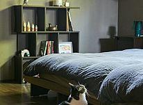 キャットウォークを自由に歩き回る猫が中心の穏やかな住まい